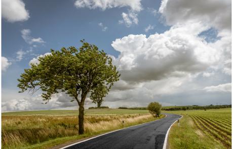 ביטוח נסיעות- איך בוחרים ביטוח שמתאים לנסיעה שלכם?